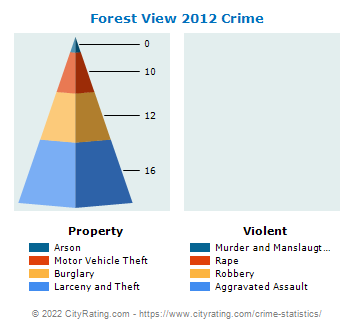 Forest View Crime 2012