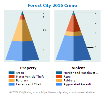 Forest City Crime 2016