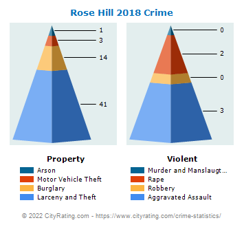 Rose Hill Crime 2018