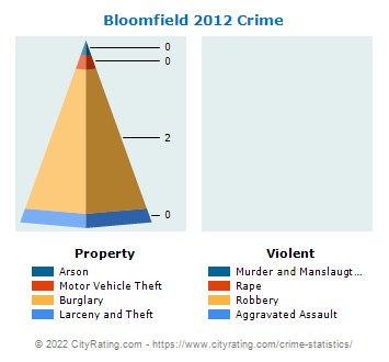 Bloomfield Crime 2012