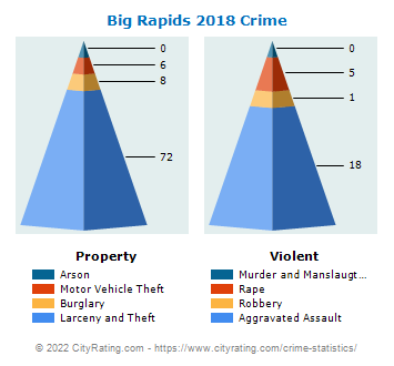 Big Rapids Crime 2018
