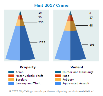 Flint Township Crime 2017
