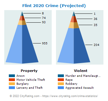 Flint Township Crime 2020