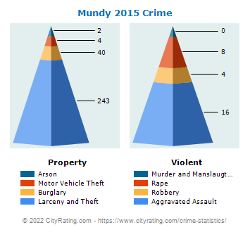 Mundy Township Crime 2015