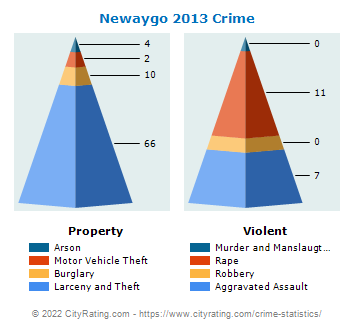 Newaygo Crime 2013