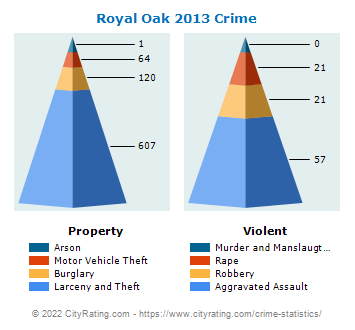 Royal Oak Crime 2013