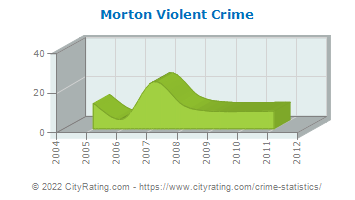 Morton Violent Crime