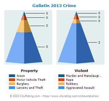 Gallatin Crime 2013