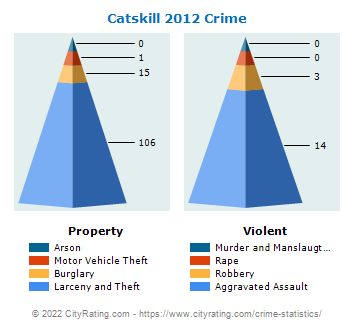 Catskill Village Crime 2012