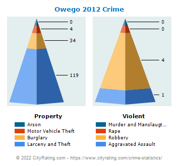 Owego Village Crime 2012