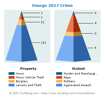 Owego Village Crime 2017