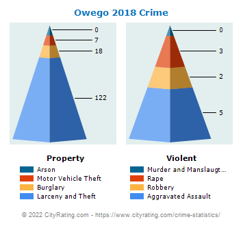 Owego Village Crime 2018