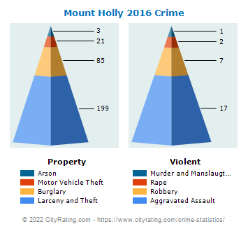 Mount Holly Crime 2016