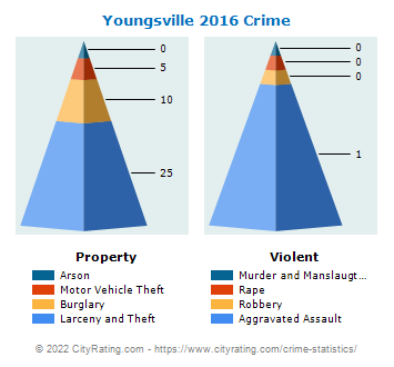 Youngsville Crime 2016