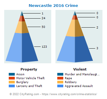 Newcastle Crime 2016