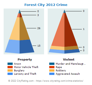 Forest City Crime 2012
