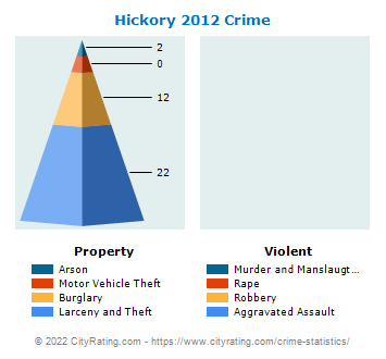 Hickory Township Crime 2012