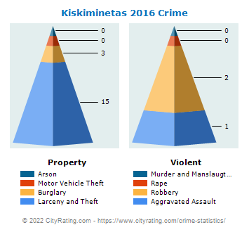Kiskiminetas Township Crime 2016