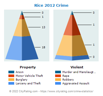 Rice Township Crime 2012