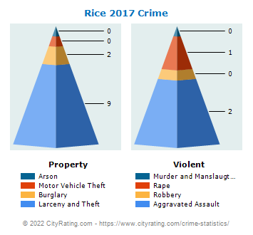 Rice Township Crime 2017