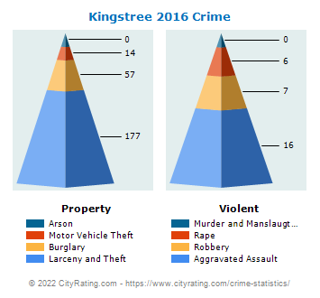 Kingstree Crime 2016