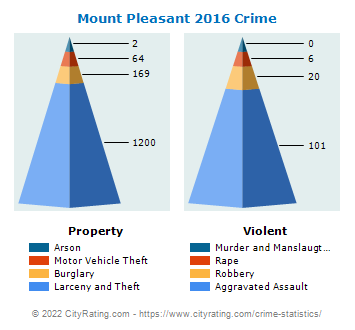 Mount Pleasant Crime 2016