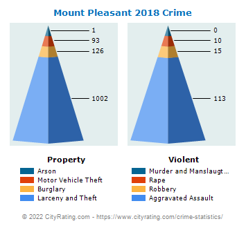 Mount Pleasant Crime 2018