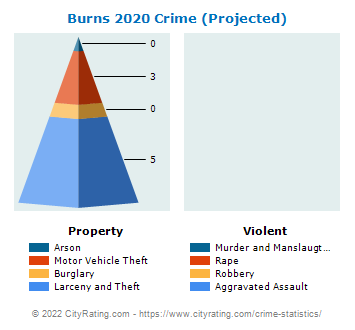 Burns Crime 2020