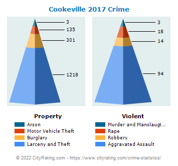 Cookeville Crime 2017