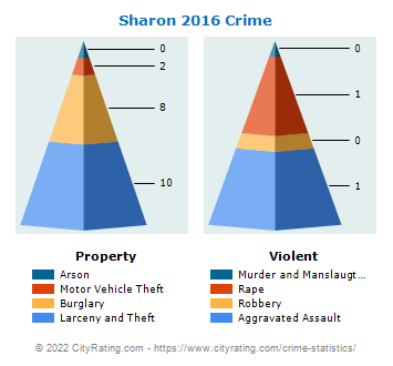 Sharon Crime 2016