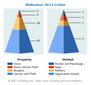 Muleshoe Crime 2012
