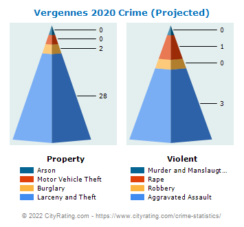 Vergennes Crime 2020