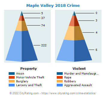 Maple Valley Crime 2018